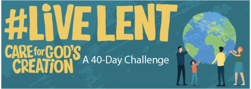 #LiveLent: Care for God's Creation is the Church of England's Lent Campaign for 2020