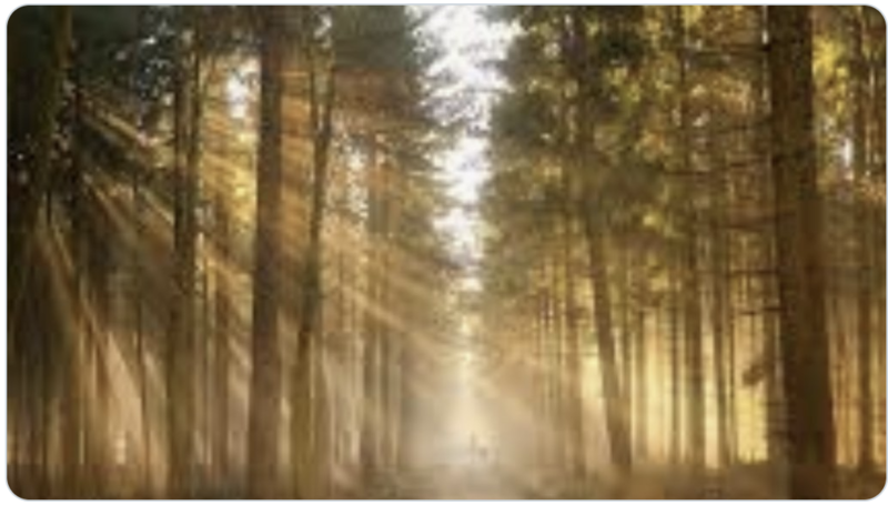 Prayer and Spirituality Matters - 12 March